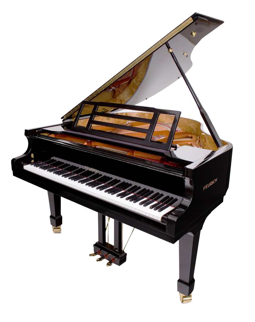 The Feurich Professional I is one of the few examples available today of a small and solidly built grand piano that can deliver a quality and complete bass tonal range