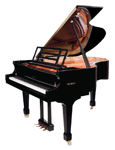 The Feurich 178 Professional II model has proven itself to be adequate in larger rooms including small concert halls.
