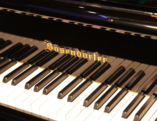 Bosendorfer Model 290 Imperial Grand Piano Logo on Fall