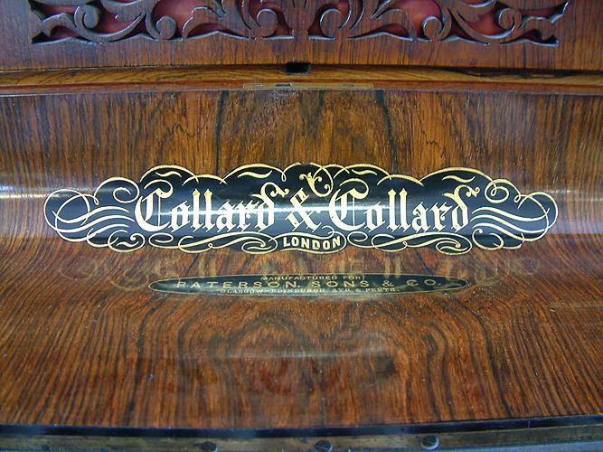 Collard and Collard name on fall