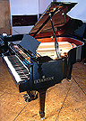 Brodmann 168 Grand Piano