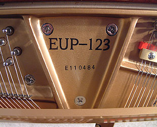 Essex EUP 123 upright Piano for sale. We are looking for Steinway pianos any age or condition.