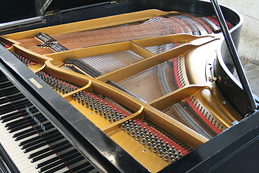 Neumeyer Grand Piano for sale.