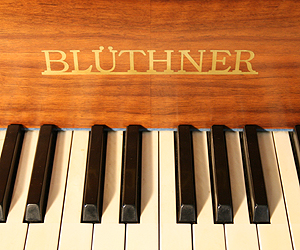 Bluthner Grand Piano for sale.