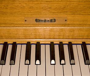 Rippen Grand Piano for sale.