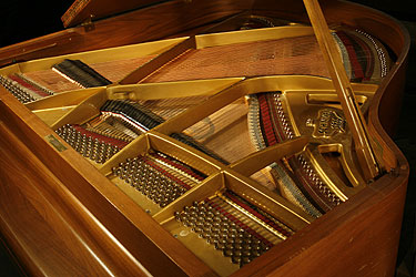 Schimmel Grand Piano for sale.