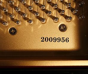Steinhoven  Model 170 Grand Piano