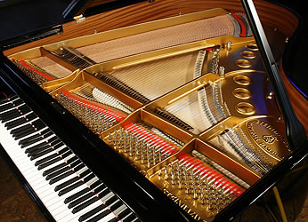 Brand New Steinway  Model M  Grand Piano for sale. We are looking for Steinway pianos any age or condition.