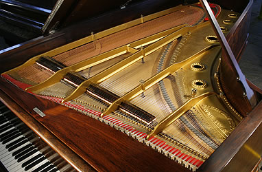 Antique, Steinway  Concert Grand Piano for sale. We are looking for Steinway pianos any age or condition.