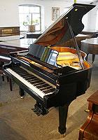 Otto Altenburg grand piano For Sale
