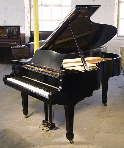 A 1979 yamaha c5 conservatory grand piano with a black for Big grand piano