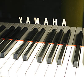 Yamaha C7 Grand Piano for sale. We are looking for Steinway pianos any age or condition.