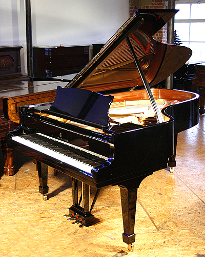 A 1982 steinway model b grand piano for sale with a black for Big grand piano