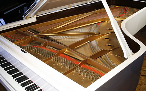 White, Steinway Model D  Concert Grand Piano for sale. We are looking for Steinway pianos any age or condition.