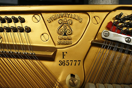 Steinway Model F upright Piano for sale.