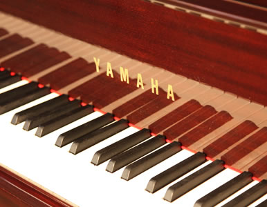 Yamaha C3 Grand Piano for sale. We are looking for Steinway pianos any age or condition.