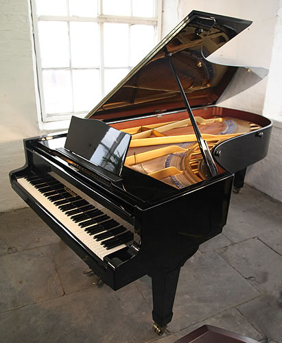 Bluthner concert grand piano for sale with a black case for Big grand piano