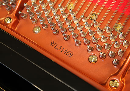 Wendl and Lung Model 178  Grand Piano for sale.