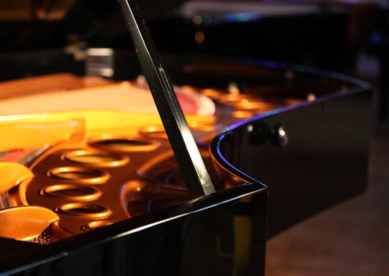 Bosendorfer Imperial grand piano lidstay