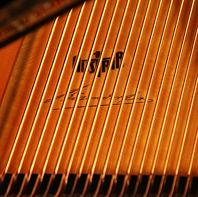 Bosendorfer Imperial grand piano stamp on soundboard