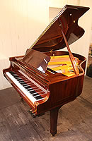 New Steinhoven Model GP160  grand piano