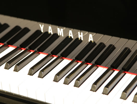 Yamaha c3 grand piano for sale we are looking for steinway for Yamaha c3 piano review