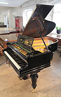 A restored, 1899, Bechstein Model A grand piano with a black case and turned legs.