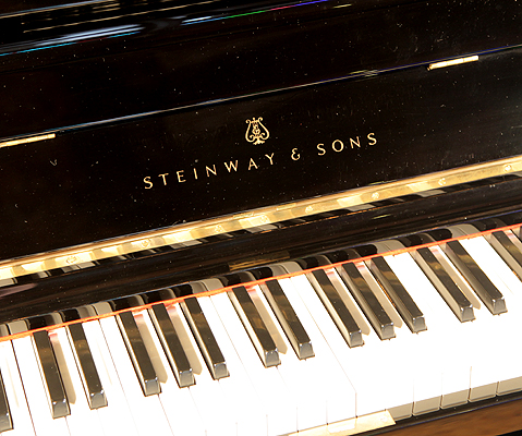 Steinway manufacturers logo on fall