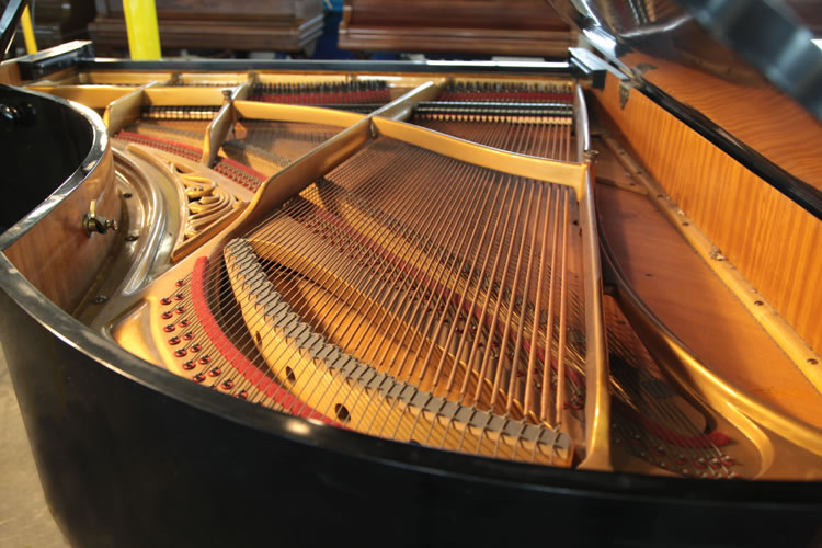 Ibach Grand Piano for sale.
