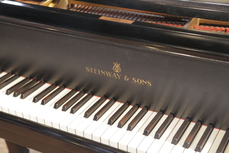 Steinway Model A manufacturers logo on fall