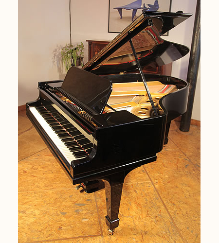 A restored, 1914, Steinway Model O grand piano with a black case and spade legs. Piano has eighty-eight notes and two pedals