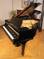 A restored, 1914, Steinway Model O grand piano with a black case and spade legs.