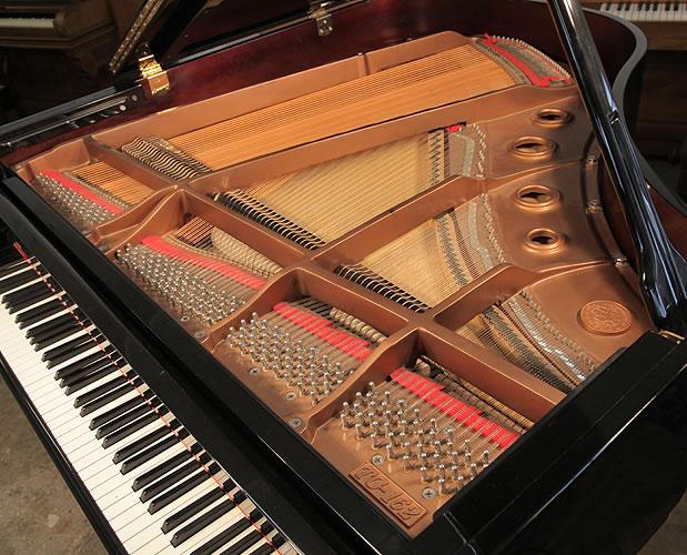 Toyama instrument