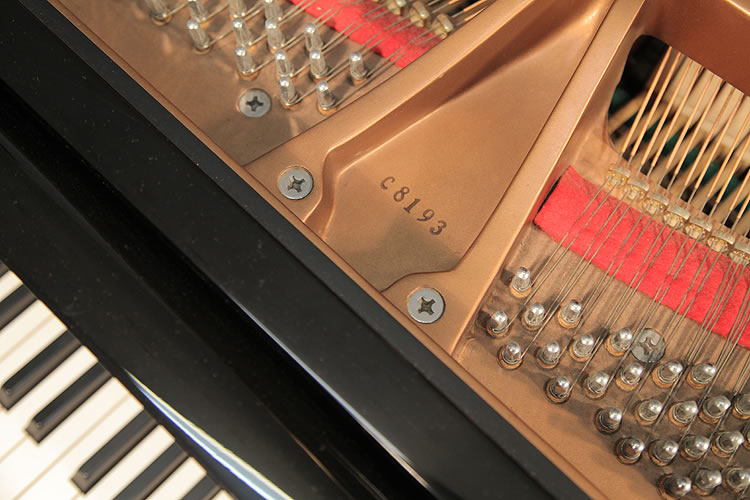 Toyama piano serial number