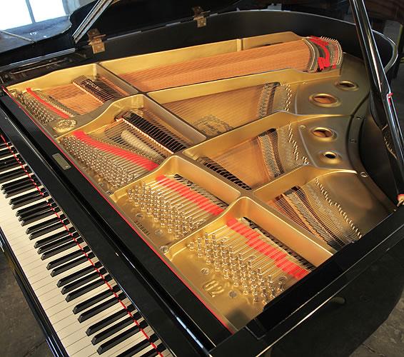 Yamaha G2 instrument
