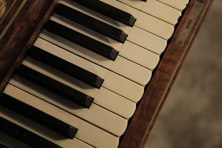 Steingraeber  scalloped piano keyboard