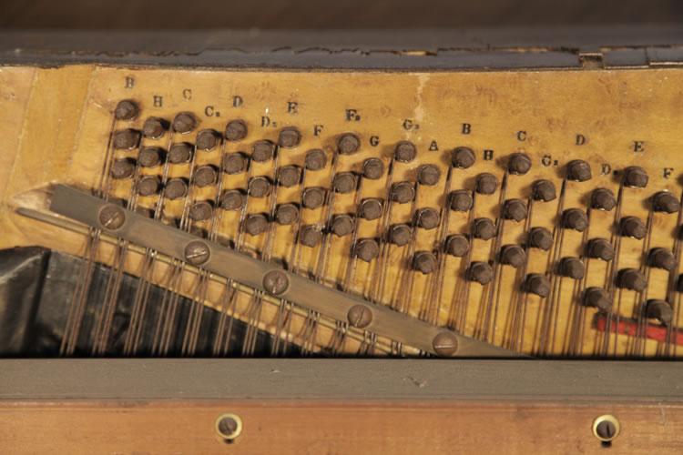 Steingraeber instrument