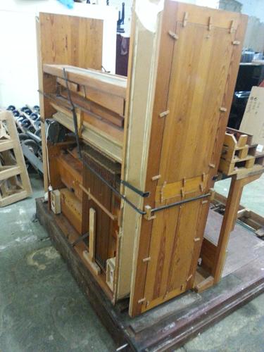 Organ rear view