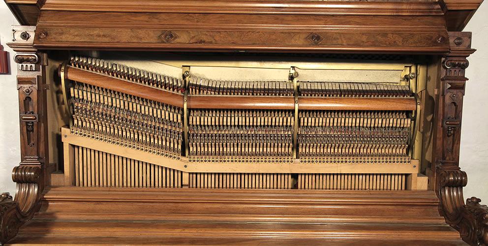 Ehret instrument