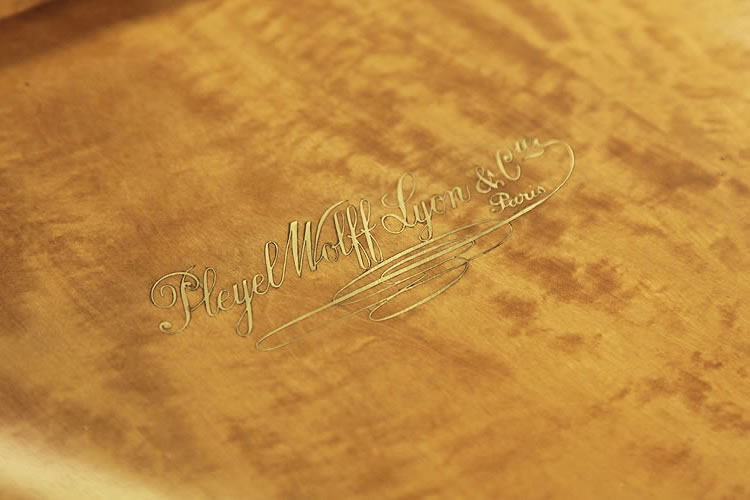 Underside of piano lid inlaid in Pleyel, Wolff, Lyon et Cie in brass