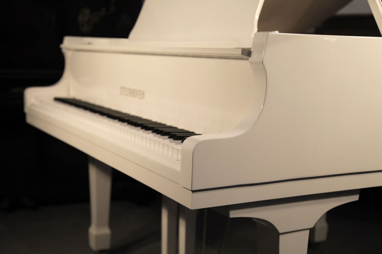 Steinhoven piano cheek detail