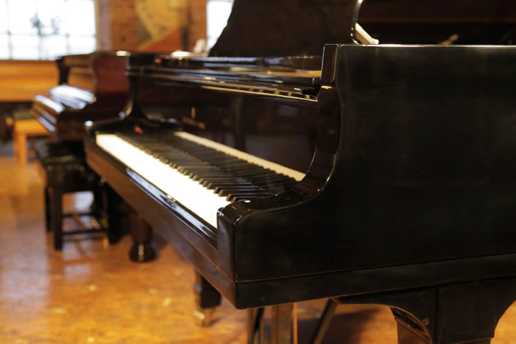 Steinway Model D Grand Piano for sale. We are looking for Steinway pianos any age or condition.