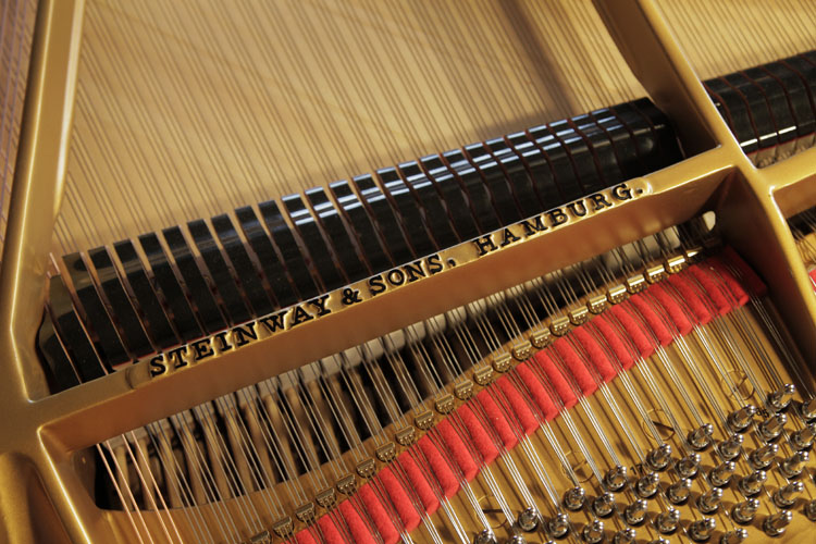 Steinway model M serial number. We are looking for Steinway pianos any age or condition.