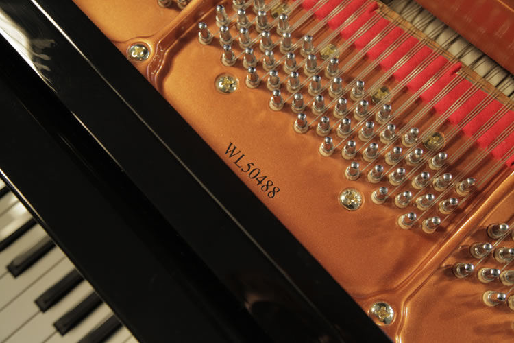 Wendl and Lung Model 161  Grand Piano for sale.