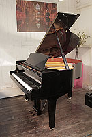 Carl Steinberg grand piano with a black case and spade legs