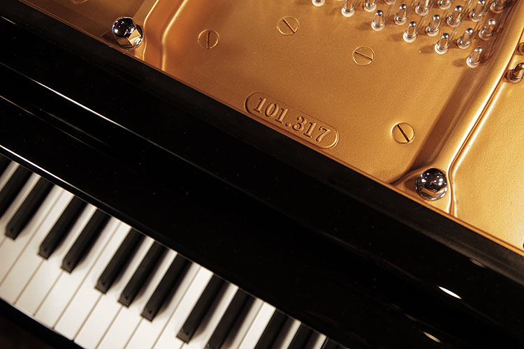 Wilh Steinberg  Grand Piano for sale.