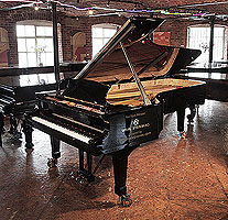 A brand new, Wilh Steinberg WS-D275 concert grand piano with a black case and brass fittings.