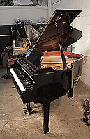 A  Hamlyn Klein CS-142 baby grand piano with a black case and spade legs