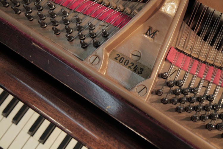 Steinway  model M piano made in Germany. We are looking for Steinway pianos any age or condition.