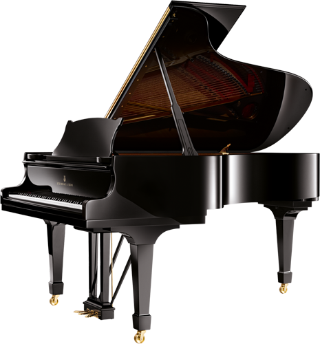 Steinway call the Steinway Model B their Music Room Grand. It is created for a larger space with recital halls, auditoriums or recording studios in mind.
